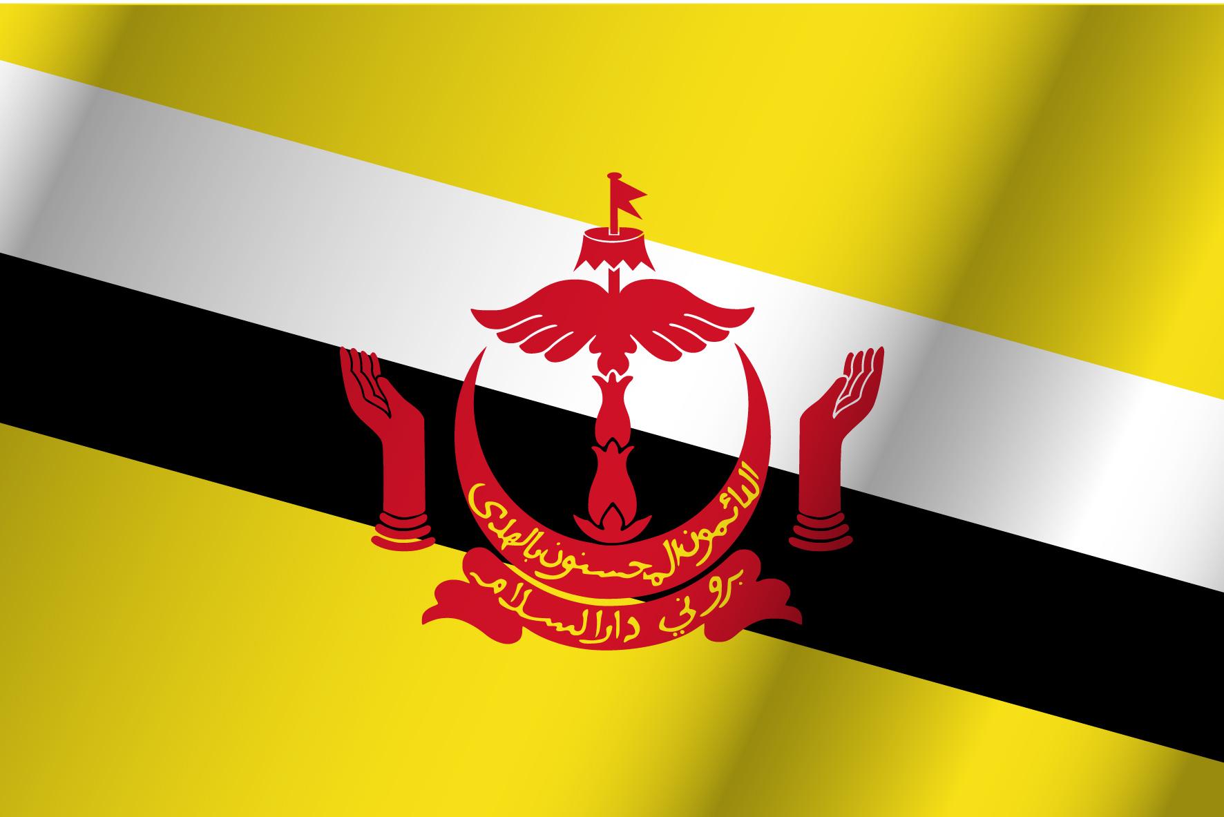 la bandera blanca azul y amarilla