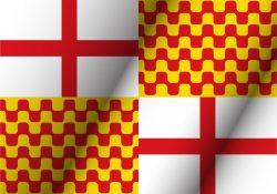 bandera tabarnia