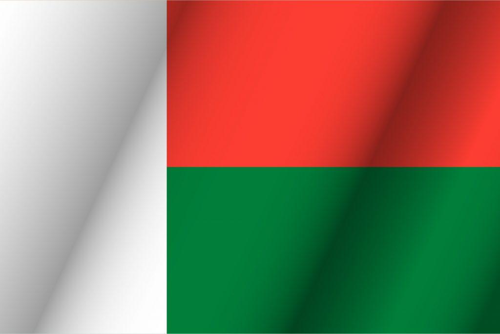 bandera verde blanca y negra horizontal
