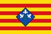 Bandera de Provincia de L�rida