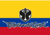 Bandera de Tomorrowland Colombia
