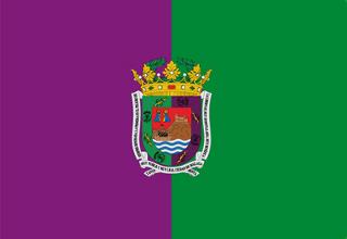 LIGA J28ª: MALAGA CF vs FC BARCELONA (Sab 10/Mar 20:45 / Movistar Partidazo) 200-bandera-Malaga