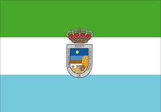 Bandera de Torremolinos