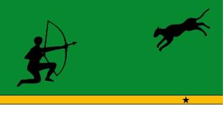 Bandera de Amazonas (Colombia)