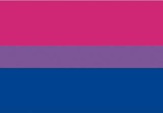 Bandera de Bisexual