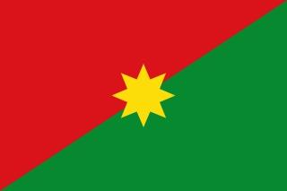 Bandera de Casanare