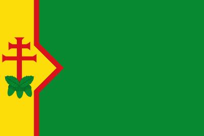 Bandera de Codos
