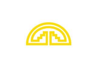 Bandera de Comunidad Andina