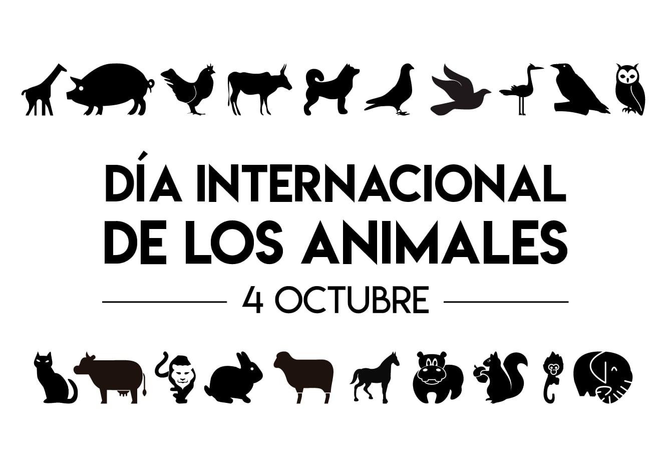 Bandera de Dia Internacional de los Animales