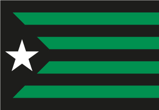 Bandera de Estelada Joventut de Badalona