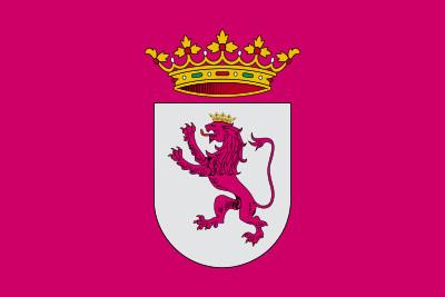 Bandera de Leonesismo