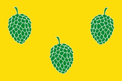 Bandera de Pina de Ebro
