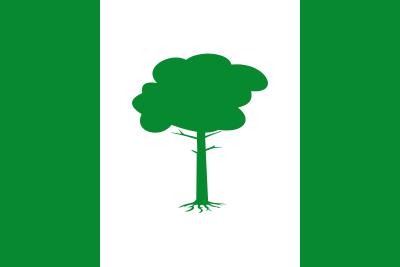 Bandera de Pinos Puente