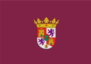 Bandera de Puerto Real