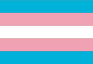 Bandera de Transexual